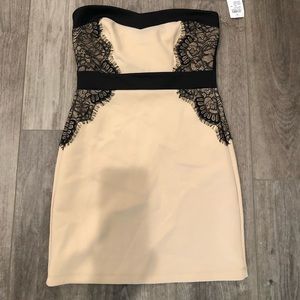 Windsor NWT  cream & black strapless dress size 5
